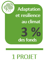 Climate Adaptation & Resilience - $100 Million - 1 Project